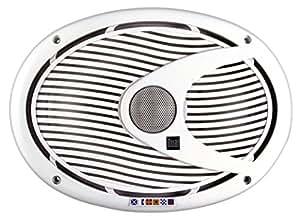 Dual DMS692 6 x 9-Inch 2-way 200 Watt Poly, Marinized, Marine Speakers
