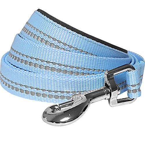 Blueberry Pet 2 Colors 3M Reflective Pastel Color Dog Leash with Soft & Comfortable Handle, 4 ft x 1, Baby Blue, Large, Leashes for Dogs
