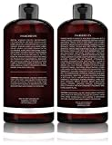 Art Naturals Organic Moroccan Argan Oil Shampoo and Conditioner Set (2 x 16 Oz) - Sulfate Free - Volumizing & Moisturizing, Gentle on Curly & Color Treated Hair,For Men & Women Infused with Keratin