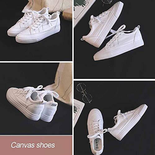 De Basses Baskets Printanière En White Élégant Chaussures Dentelle Et Blanc Sport OwZdZqE