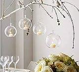 Flair Set of 6 Hanging Glass Globe Plant Terrariums - Glass Orbs Air Plants Tea Light Candle Holders Succulents Moss Miniature Garden Planters Home Decor Indoor Garden DIY Gifts (4'' Tall by 4'' Diamete
