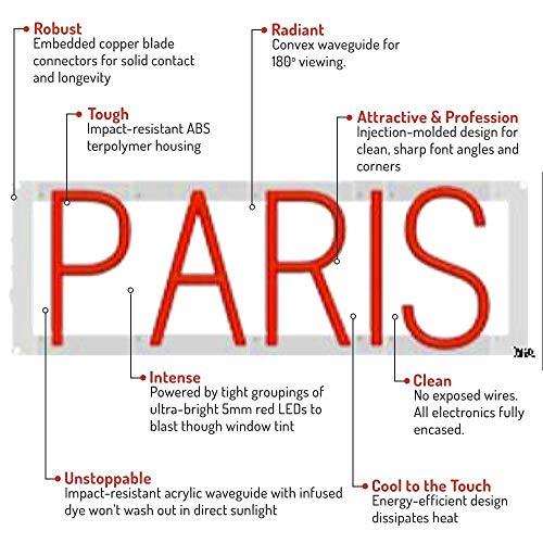 Flex Led Light Paris in US - 1