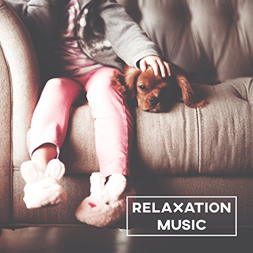Relaxation Music - Sounds for Rest, Famous Composers After Work, Calm Songs, Bach, Beethoven