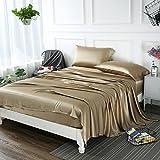 ZIMASILK 4 Pcs 100% Mulberry Silk Bed Sheet Set,All Side 19 Momme Silk (Queen, Taupe)