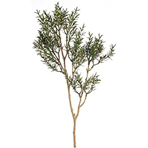 """Melrose Club Pack of 12 Lovely Green Artificial Rosemary Spray 21"""" 9"""