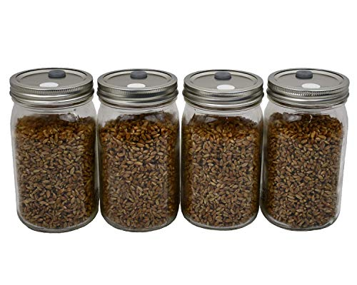 Sterilized Rye Berry Mushroom Substrate in Injectable Jars by Out-Grow