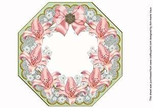 Color rosa lirio de menta de encaje de octógono 8in marco Foto hoja de Ann-Marie Vaux