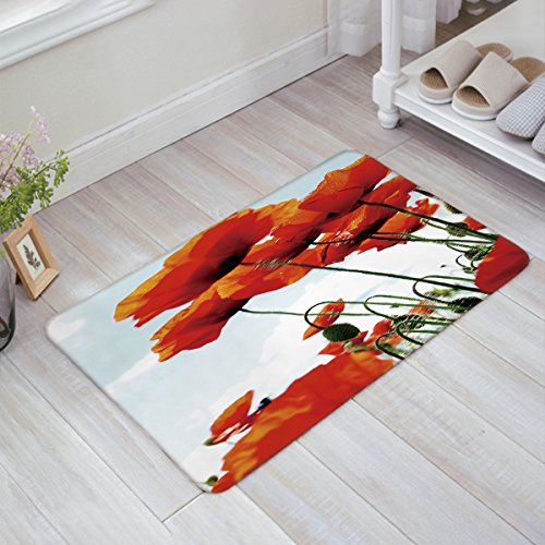 Prime Leader Indoor Doormat Stylish Welcome Mat Red Poppy Entrance Shoe Scrap Washable Apartment Office Floor Mats Front Doormats Non-Slip Bedroom Carpet Home Kitchen Rug 23.6