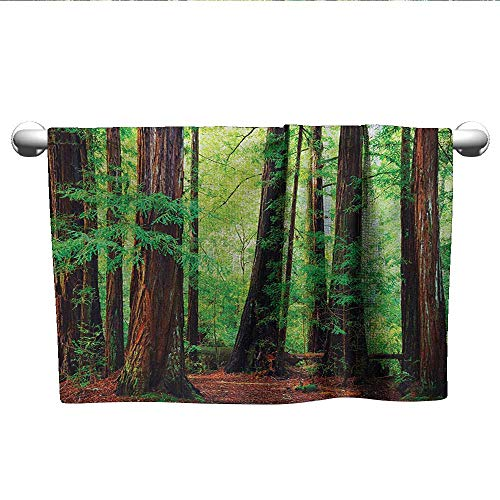 (alisoso Woodland,Personalized Towels Redwood Trees Northwest Rain Forest Tropical Scenic Wild Nature Lush Branch Quick-Dry Towels Green Redwood W 14