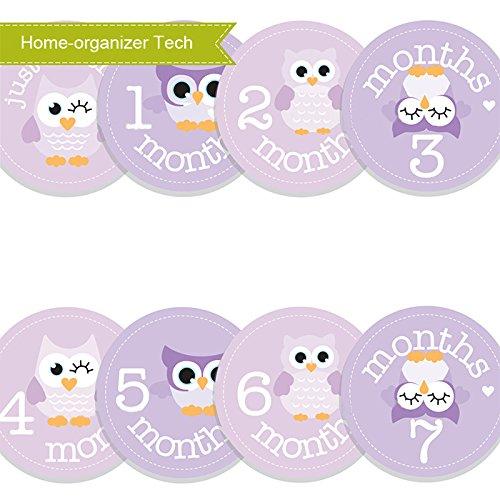 Home-organizer Tech Baby Month Stickers Cartoon Owl Boy Girl 1-12 Monthly Milestone Sticker Best Birthday Shower Gift Party Photo Age Sticker by Home-organizer Tech