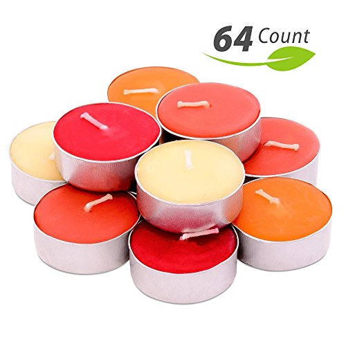 Exquizite Fall Scented Tealights - 64 pcs - Set of 16 Highly Scented Luxury Tealight Candles with 4 Autumn Fragrances - Pumpkin Spice with Nutmeg, Orange Clove, Apple Cinnamon and French Vanilla