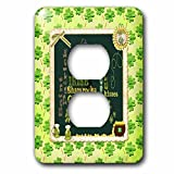 3dRose Beverly Turner St Patrick Day Design - Words, Faith, Luck, Blessed, Leaf, Irish, Shamrock, Saint Patrick - Light Switch Covers - 2 plug outlet cover (lsp_282043_6)