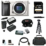 Sony Alpha a6000 (ILCE6000/S ILCE6000S ILCE6000-S) 24.3 Interchangeable Lens Camera - Body only (Silver) + Sony 64GB SDXC Class 10 Memory Card + High Speed USB 2.0 Card Reader + Wasabi Power Battery and Charger for Sony NP-FW50 2 Batteries One Charger