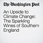 An Upside to Climate Change: The Sparkling Wines of Southern England   Dave McIntyre