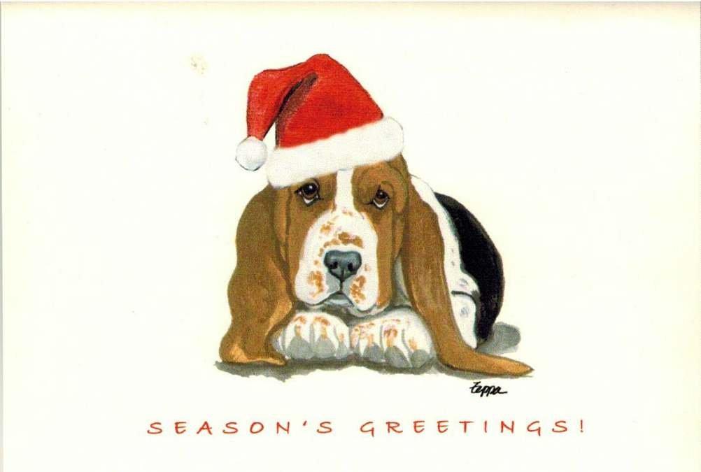 Amazon.com : Basset Hound Puppy Christmas Cards Box of 8 Cards ...
