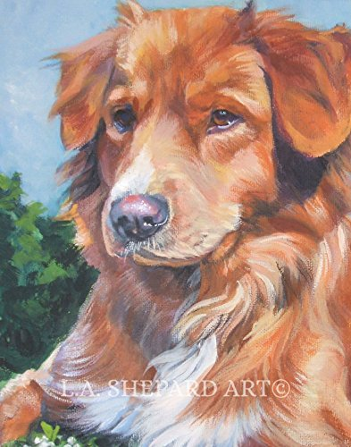A Nova Scotia Duck Tolling Retriever dog art portrait print of an LA Shepard painting 8x10