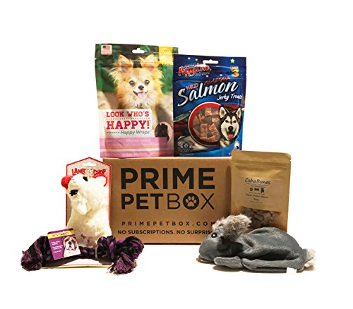 Dog Gift Box (Prime Pet Box Small Dog Gift Box Care Package - Made in the USA Premium Treats, Rabbit, Lamb-chop, and Rope Toy)