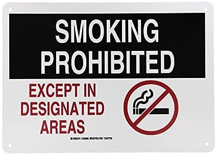 Amazon.com: Brady 128080 no smoking Sign, Legend