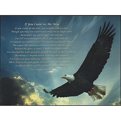 Dicksons Wall Plaque - Eagle/If You Could See Me Now for sale  Delivered anywhere in USA