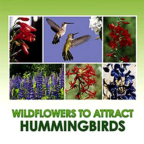 Hummingbird Nectar Wildflower Seeds Bulk + 8 Bonus Gardening eBooks + Open-Pollinated Wildflower Seed Mix Packet, Non-GMO, NO FILLERS, Annual, Perennial Wildflower Seeds Year Round Planting - 1 oz