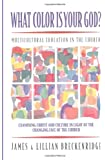 What Color Is Your God?: Multicultural Education in the Church (Bridgepoint Books)