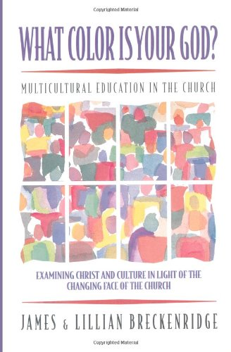 What Color Is Your God   Multicultural Education In The Church  Bridgepoint Books