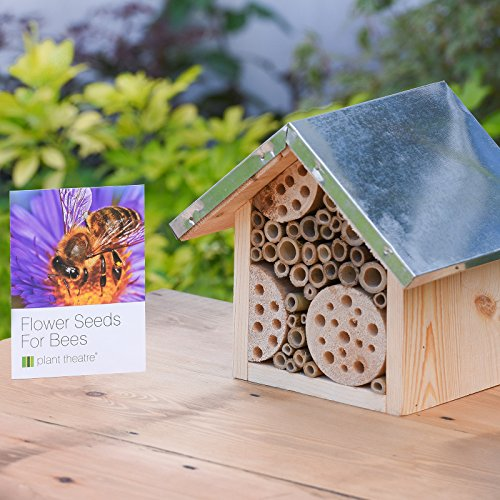 -[ Bee Hotel & Flower Seeds for Bees by Plant Theatre - Excellent Gift Idea  ]-
