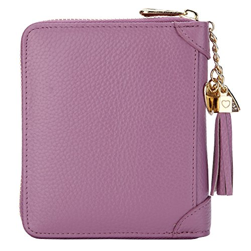 SafeCard 40 Card Solts Women's Credit Card Case Wallet 2 ID Window and Zipper Card Holder (40 Card Purple)