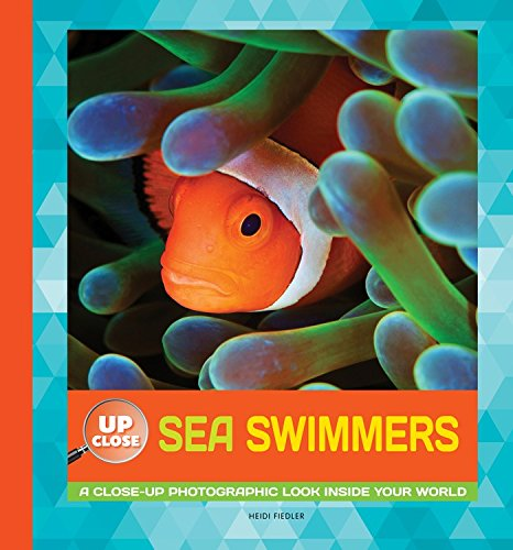 Sea Swimmers: A Close-Up Photographic Look Inside Your World (Up Close)