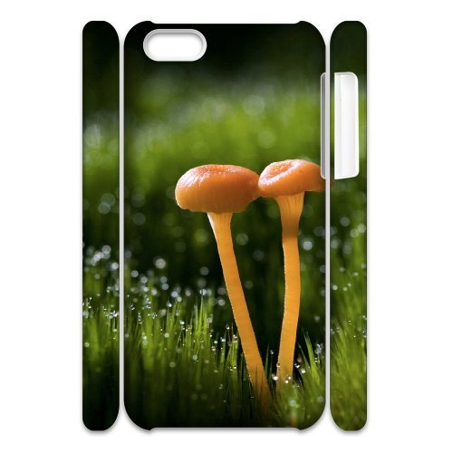 SYYCH Phone case Of Color Mushrooms Cover Case For Iphone 5C