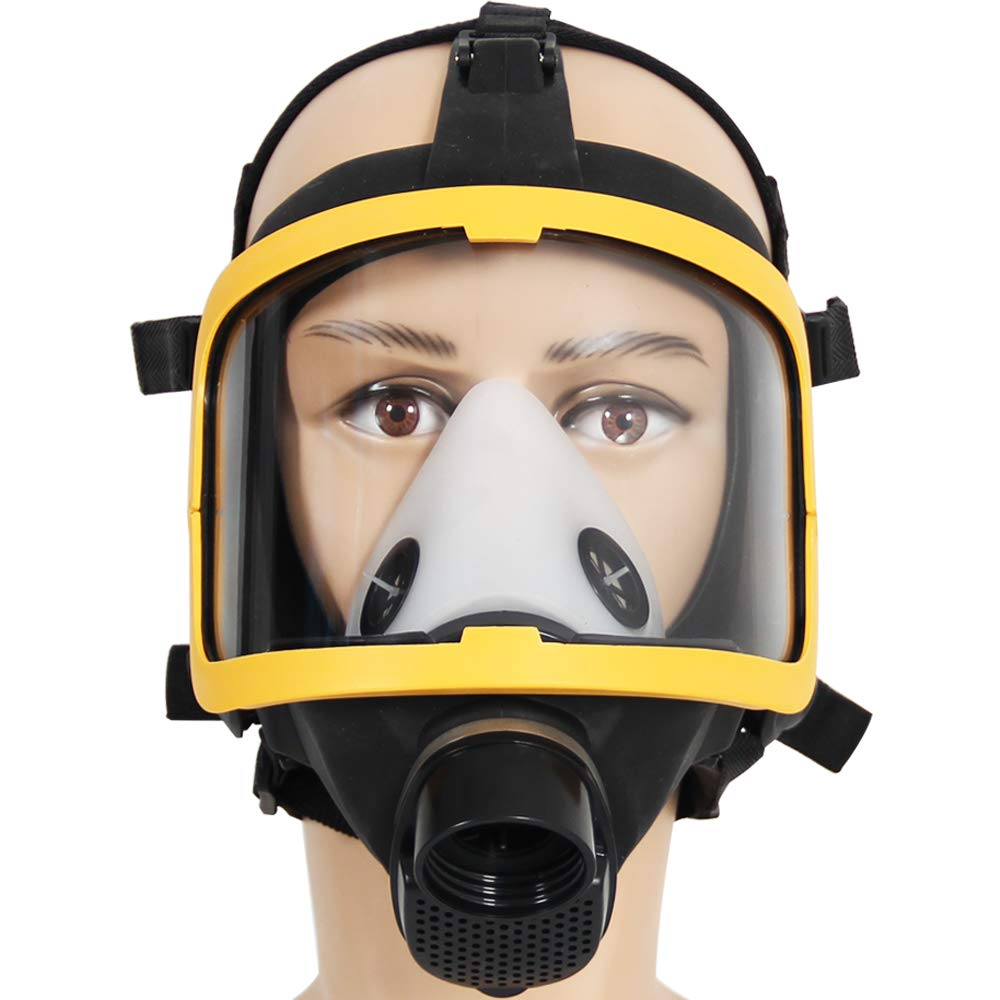 Electric Constant Flow Air Mask, FDA Tested Full Face Mask Respirator, Powered Respirator PAPR Mask, Good Quality Filter by Trudsafe (Image #4)