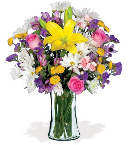 European Garden Yellow Lilies, Pink Roses, White Daisies, Purple Alstroemeria Lilies Bouquet, with a Glass Vase (Fresh Cut Flowers)