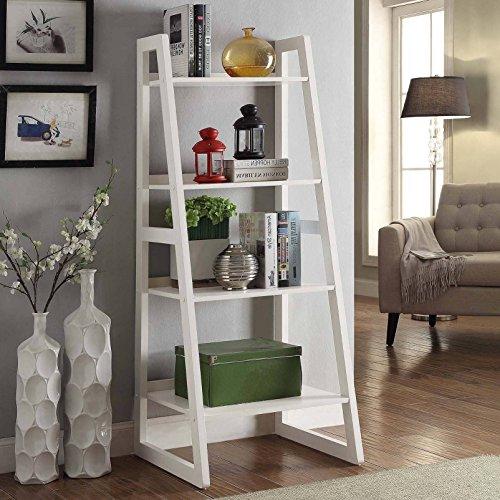 Briarwood Home Decor Wood Ladder-style Bookcase White White Finish (Briarwood Furniture)
