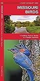 Missouri Birds: A Folding Pocket Guide to Familiar Species (A Pocket Naturalist Guide)