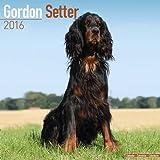 Gordon Setter Calendar - Breed Specific Gordon Setter Calendar - 2016 Wall calendars - Dog Calendars - Monthly Wall Calendar by Avonside