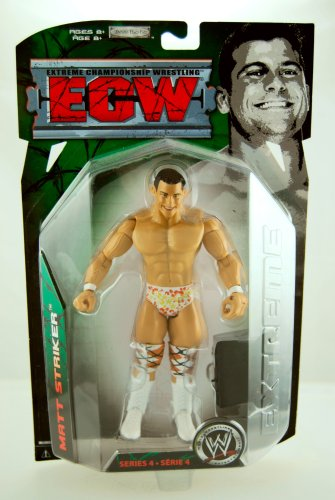 WWE - ECW - 2008 - Extreme Championship Wrestling - Matt Striker Action Figure - w/ Breifcase - Series 4 - Limited Edition - Collectible by WWE