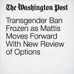 Transgender Ban Frozen as Mattis Moves Forward With New Review of Options | Dan Lamothe