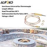Aupoko Universal Gas Thermocouple, 600 mm