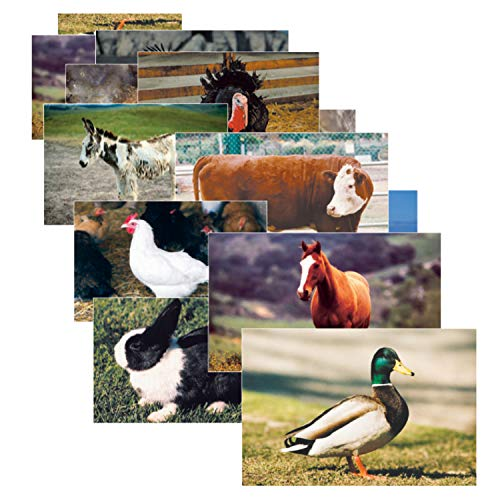Stages Learning Materials SLM152-A1 Farm Animal Real Life Learning Poster Set (Pack of 10)