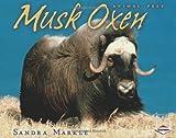 Musk Oxen, Sandra Markle, 082256064X