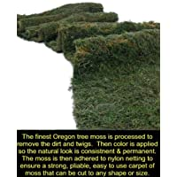 Moss Carpet Natural Forest Moss Aisle Runner Floral Decoration 9 ft x 4 ft