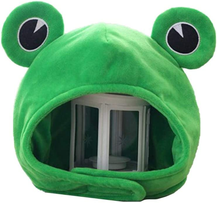 Image result for funny froggy hat