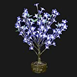 Bright Baum LED Light Artificial Bonsai Tree, 2.0-Feet, Cool White JUNO