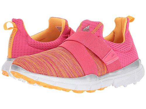 協力する使用法ブリリアント(アディダス) adidas レディースゴルフシューズ?靴 Climacool Knit Real Pink/Real Coral/Real Gold 7.5 (24.5cm) B - Medium