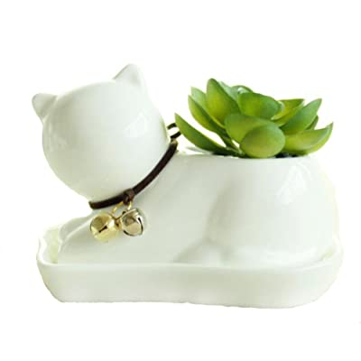 Youfui Cute Succulent Planter Animal Shaped Flower Pot Decor for Home Office Desk (Cat): Garden & Outdoor