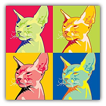 amazon com sphynx cat pop art animal art decor bumper sticker 5 x