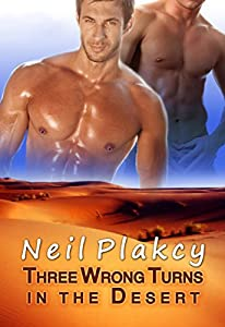 Three Wrong Turns in the Desert (Have Body Will Guard Book 1)