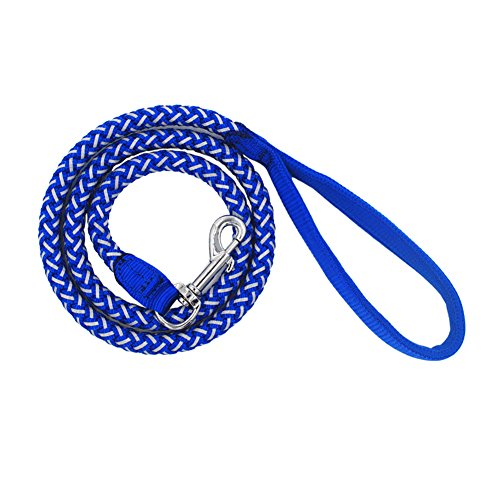 Reflective Nylon Dog Training Leash, 4 Feet Long, 1/2 Inch Thick | Extremely Heavy Duty & Durable Lead for Running, Walking or Hiking | Extra Hook Holder & More Visible (blue) (Dark Blue)