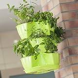 COUBI serie vaso pensile a trifoglio per piante, erbe aromatiche 3 livelli colore: lime