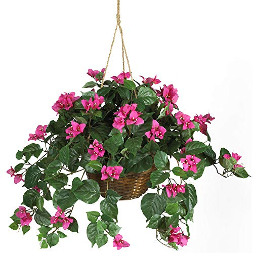 Nearly Natural 6608 Bougainvillea Hanging Basket Decorative Silk Plant, Pink (Best Hanging Flowers For Porch)